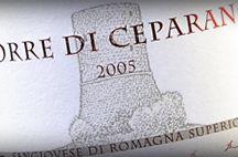 Sangiovese, vino rosso | Wineverse