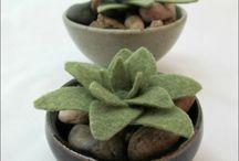 Felt plant