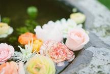 Flower / Flower / by Hiroyuki Oyama