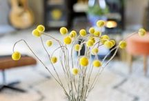 Decor details / by Emily Simpson