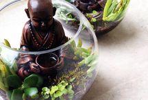 Buddha Terrariums / Hand- Crafted Terrariums for sale! http://terrariumsbytom.bigcartel.com