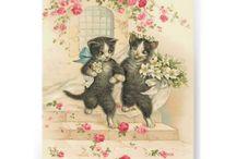 postais de casamento