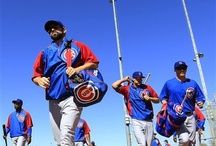 Chicago cubs spring training / by Mark Froeliger