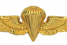 Paratroopers  Badges and Insignia of the World   Special Forces  beret badge