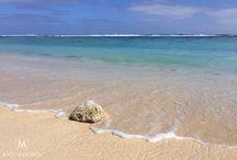 Travel Cook Islands