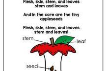 Preschool Apple Lessons Letter A