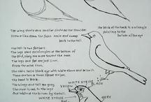 Art Studies: Mammals (Arial Class)