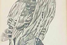 Anli's Art - Pencil Pastle Charcoal