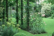 Entree tuin / Kleine, grote bloemperken, tuin entree, pergola's