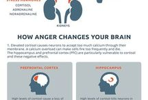How anger affects you brain and body