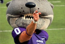 Wildcats!! / Anything about KSU sports / by Becky Bredfeldt