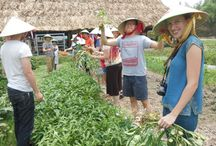 Visit Vietnam / Here you can find the best travel photos made in Vietnam by Guides from @LocalGuiding