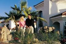 San Palmilla - Tempe, AZ / 750 W. Baseline Road, Tempe, AZ 85283 Tel: (888) 314-9247 • Fax: (480) 838-2727 Rent: $899 - $1,390 Bedrooms: 1 - 3 Bathrooms: 1 - 2