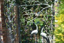 Brama kuta z ptakami