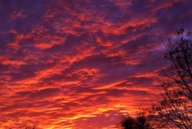 Sky Shows / by Helen Sneddon