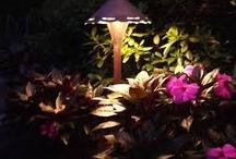 Landscape lighting / Landscape lighting adds to the look of your yard.
