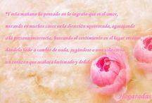 La Hogaradas más íntima / Frases de los escritos personales de Hogaradas