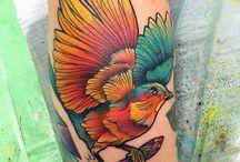 Pássaro neotradicional