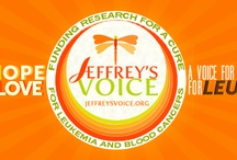Jeffrey's Voice / Jeffrey's Voice is a 501(c)3 public charity to fund research that will lead to a cure for Leukemia and Blood Cancers. In addition to so many others - perhaps someone you know or love - blood cancer took the lives of two beautiful and amazing young brothers - Jeffrey, directly, and Brian, indirectly. Jeffrey and Brian Horne are my children, and, but for Leukemia, they would be here with me today. Visit JeffreyVoice.org and join us in the fight against Leukemia and Blood Cancers.