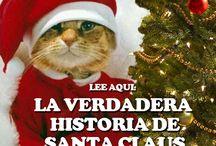 Navidad / #Navidad #Santa Claus  / by Mochileros .Org
