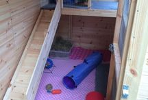 Rabbit shed