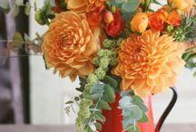 fleurs, plantations