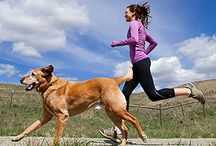 Working out with your dog / If you aren't going all the way, why go at all? - Joe Namath