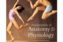 anatomy & phisiology