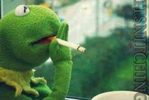 Kermit the frog meme