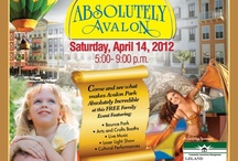 Avalon Park Orlando / Events and Businesses in Avalon Park Group's Orlando Property.
