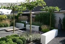 Inspiration Gardens