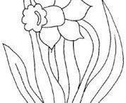 Jarní květiny-omalovánky