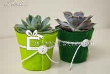 piante addobbi