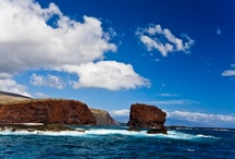 Lanai, Hawaii / by Beach.com