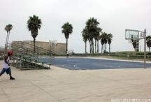 Basketball Hoops Courts