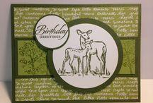 Grußkarten: Geburtstag