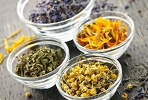 Herbs / by Linda Morrison Kreider