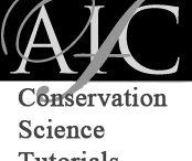 Conservación y restauración