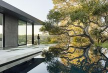 nature and architecture