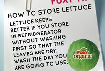 Foxy Food Tips / Great tips to keep your food Foxy fresh and delicious!