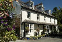 Come and Stay / our B&B in the Heart of Wales. Two guest'bedroomed guesthouse in Wales most eccentric place, Llanwrtyd Wells