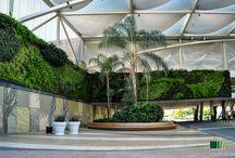 Shopping Center / Shopping Center Gardens