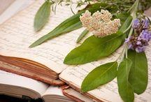 Heilpflanzen & Hausmittel