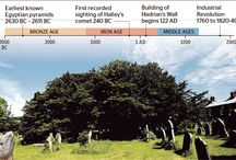 The World Tree / Nine worlds I remember, nine wood-ogresses, glorious tree of good measure, under the ground.