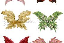 Vlinders /  Cornelia