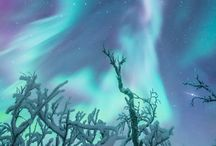 Aurora Borealis & Winter Wonderlands