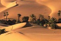 Pintura Desierto