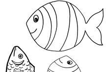 Woda i rybki