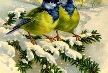 Забавные птички.