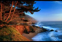 Wild Big Sur